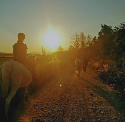 RIDING IN FUCECCHIO MARSHES | Toscana Turismo & Congressi